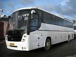 Автобус SCANIA/GOLAZ 52911 - 47 мест