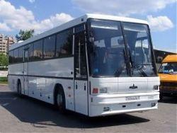 Автобус МАЗ-152062 - 47 мест